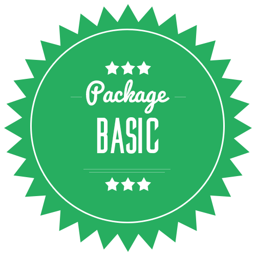 Basic Package $289